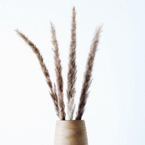 Pampas Grass Decor Fluffy